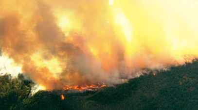Scoggins Creek Fire